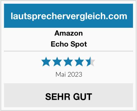 Amazon Echo Spot Test